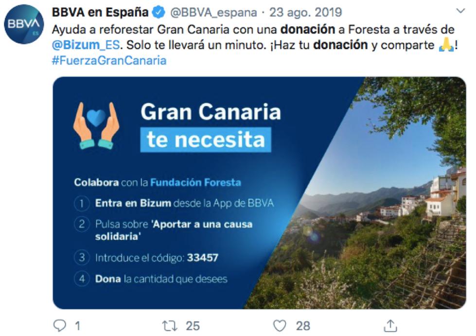 ejemplo campaña captación de fondos bizum